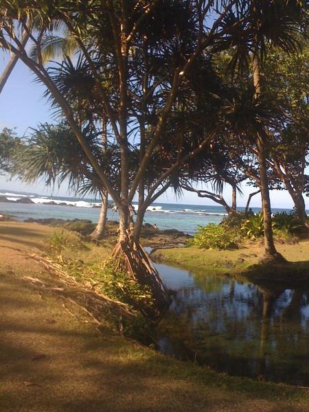 Carl Smith Beach Park #Hilo #Hawaii