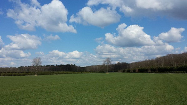 Blauwe lucht, met prachtige wolken #buienradar