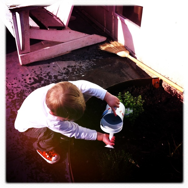 Fletcher of the day: watering plants