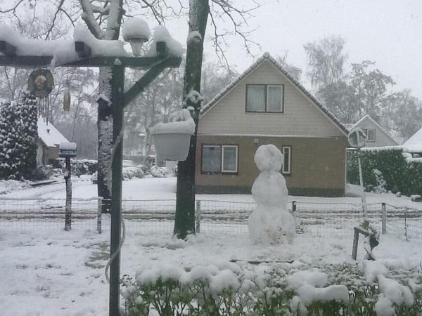 Mooi winterpracht in park patersven in wernhout brabant #buienradar