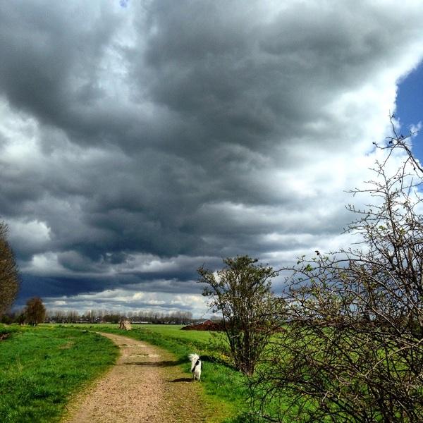 Dreigende lucht boven de polder tussen Mijdrecht en Wilnis. #buienradar