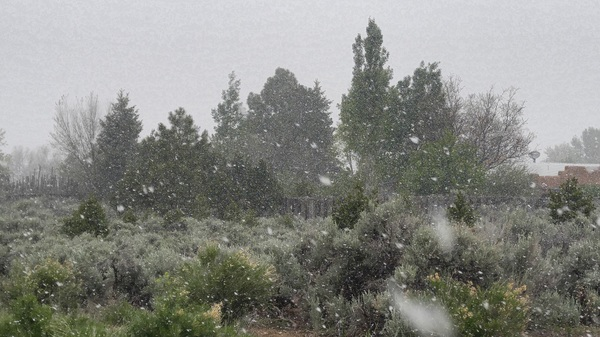 Interesting weather for this afternoon's outdoor wedding. #maysnow #taos #nm