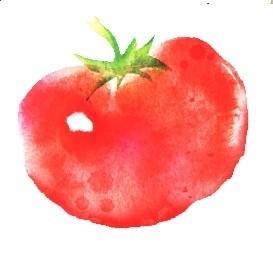 公式facebookが出来ました。 こちらも宜しくお願いします。 https://www.facebook.com/tomatonoshizuku/ #トマトのしずく #映画