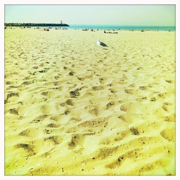 Beach strand strände ;-)