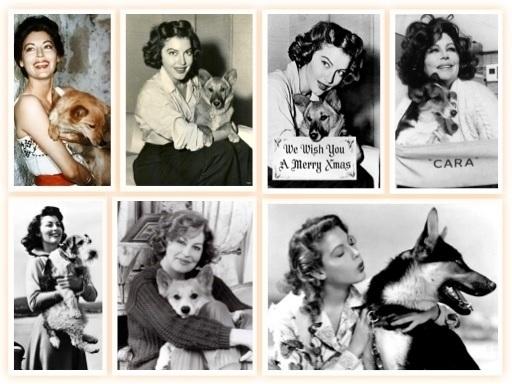 25/01/1990 Muere la  actriz Ava Gardner. Toda su vida estuvo rodeada de #perros.