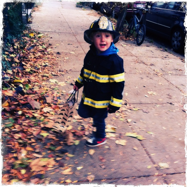 Fletcher of the day: Trick or Treat!