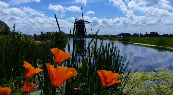 Hollandse zomerlucht #buienradar
