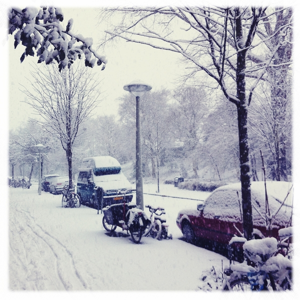 It's really snowy today!