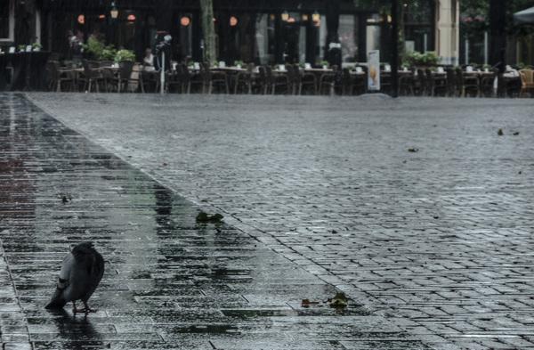 Regenachtige zondagmiddag in Meppel. In dit geval, de kunst van het weglaten. #buienradar
