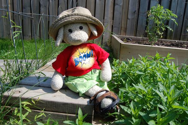 in da garden..