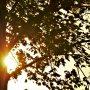 Tijdens zonsondergang waaide het behoorlijk #buienradar