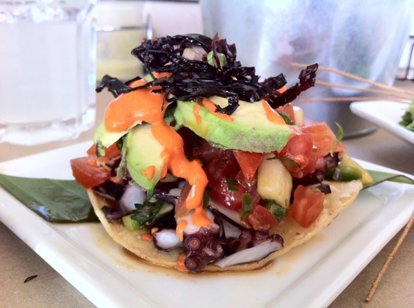 Erizo in Tijuana:  one of my favorite Cevicherías ever!  Shaved octopus tostada w avoc,chipotle mayo, pkld ancho.