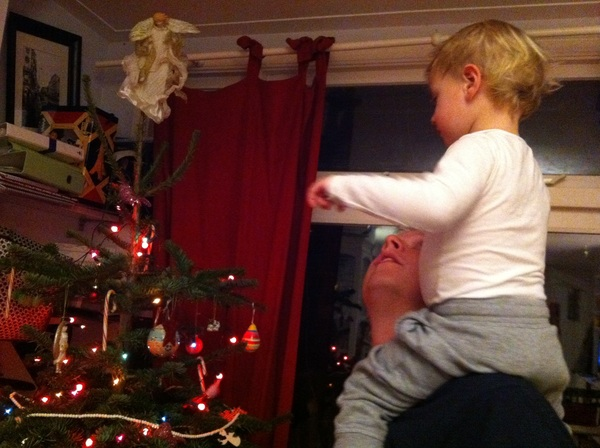 Fletcher of the day: admiring the tree