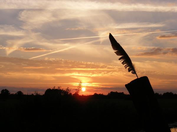 Windveer.... #buienradar