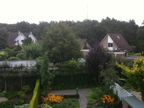 View from my old bedroom