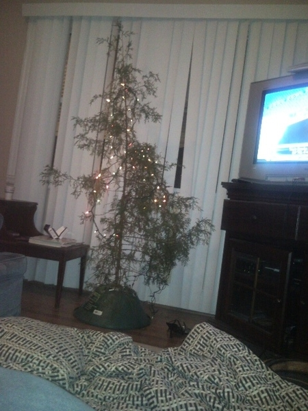 This is THE MOST GHETTO Christmas tree I've ever seen @iBleedUKBlue @AllysonA91