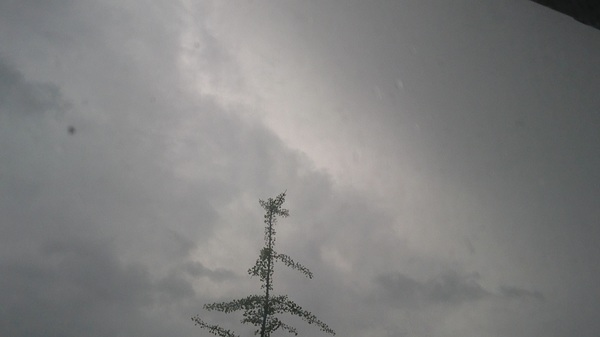 Onweer Nieuwegein #buienradar