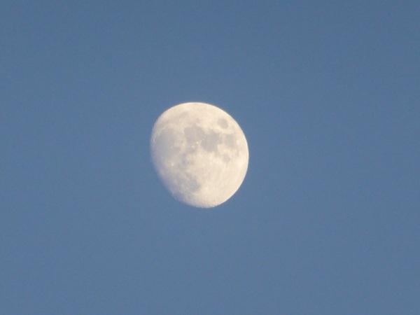 Maan boven de betuwe #buienradar