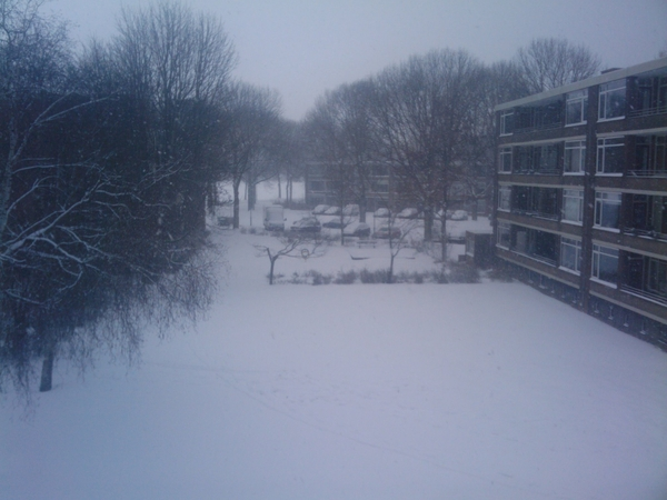 Sneeuw sneeuw #sneeuw