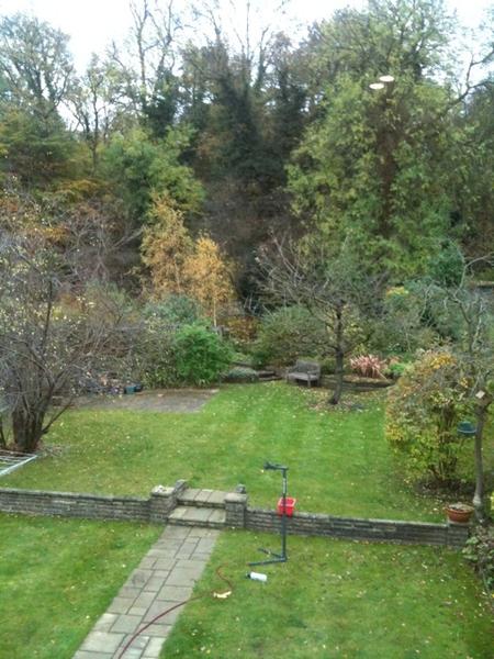 Autumn morning our garden