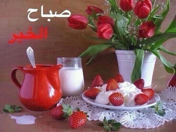 صباح الامل صباح الاشراق صباح التفاؤول صباح السعاده