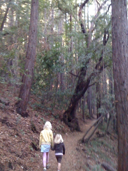 Hiking up Montalvo hill