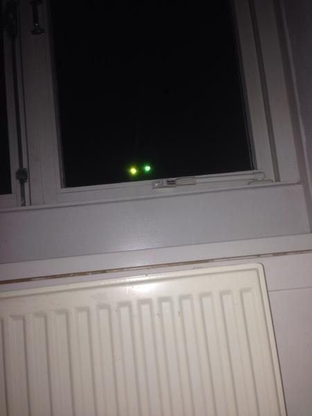 Opeens een kat voor t raam, op 3 hoog. Jongens, ik schrok me kapot. Met z'n ogen. -