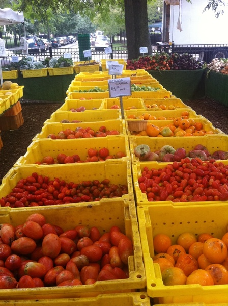 Glorious morning at Wicker Park Farmers Mkt. Ah, tomato time...