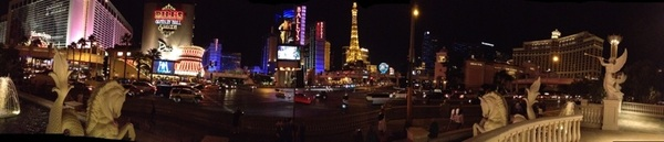 What happens in Vegas stays in Vegas! @geoff9cow @TinyHippocampus @mariatortilla1