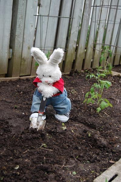 Zackary: That's good, Rufus, keep digging!!