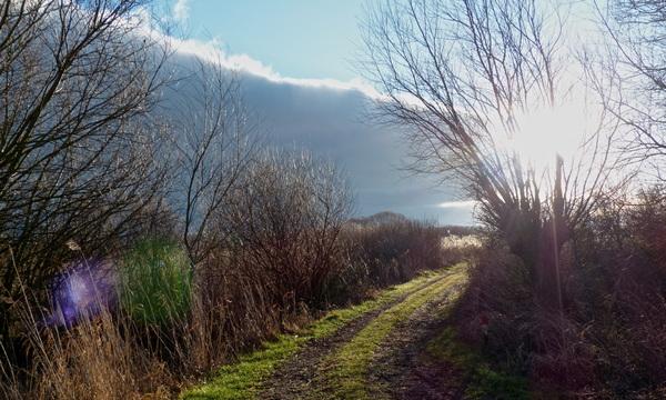 Zon komt van achter de wolken #buienradar