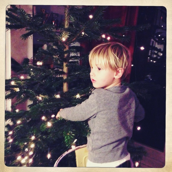 Fletcher of the day: Christmas tree