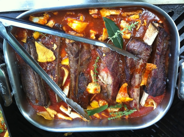 "Beautiful day n Chgo! Making dinner for friends in friends: grill-braised shortribs w wild shrooms from ""Fiesta."""
