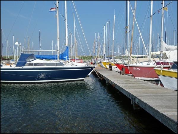 Zonnige haven vanmiddag #lovezeeland