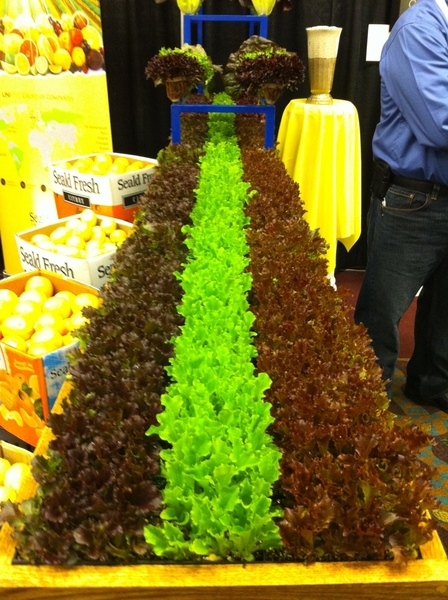 Having gr8 time speaking/doing demo at National Produce show.I LOVE a trade show w gr8 smells & enticing displays!