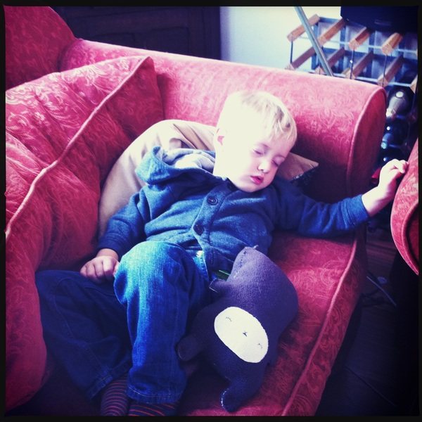 Fletcher of the day: Crashing on the couch
