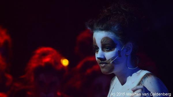 Pakkembeesie uit de #musical #cats van @rodenborch #rosmalen
