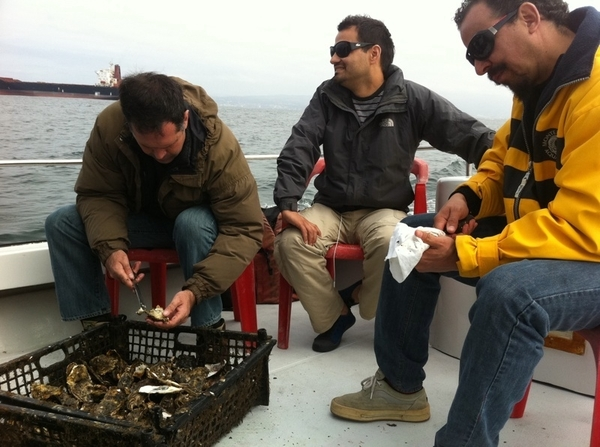Juan Carlos, chefs @benitoysolange & Alain Gencchi eating oysters right from the sea