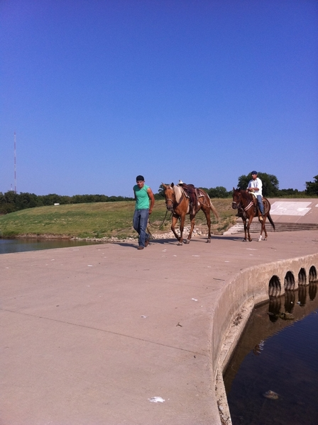 Here's another reason why I love Fort Worth. Cute Cowboys riding horses in the city parks.